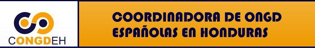 Comunicado sobre la Situación al respecto de las decisiones de España tras las Elecciones Generales en Honduras de 2017