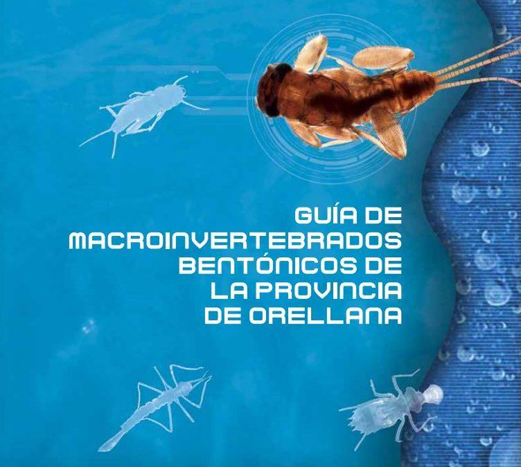 Guía de Macroinvertebrados Bentónicos de la provincia de Orellana, Equador