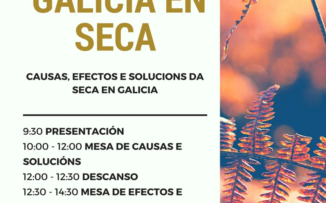 """Xornadas """"Galicia en Seca"""". Causas, efectos e solucións da seca en Galicia"""