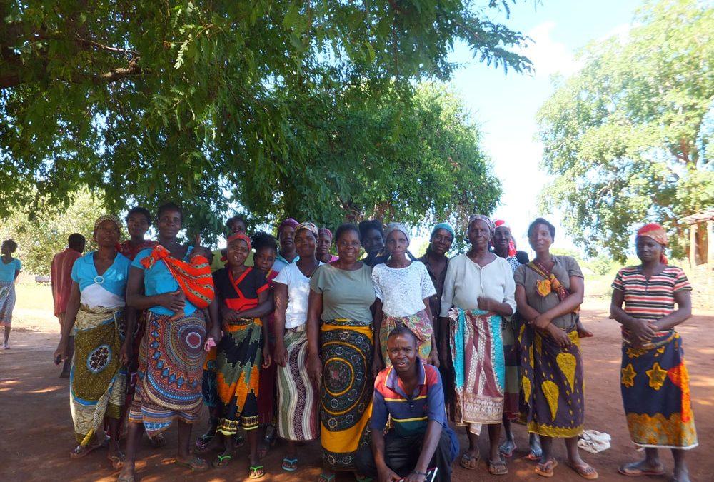 Ofertes de voluntariat PCR a Moçambic