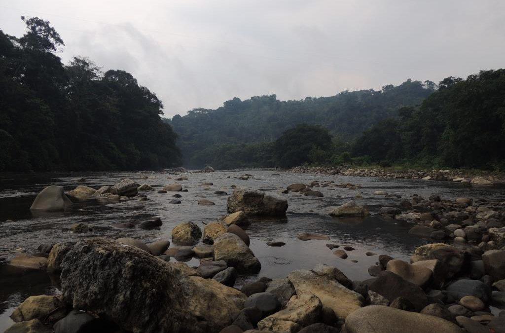 Abrimos el proceso para la contratación de una consultoría de investigación sobre cambio climático en Orellana (Ecuador)