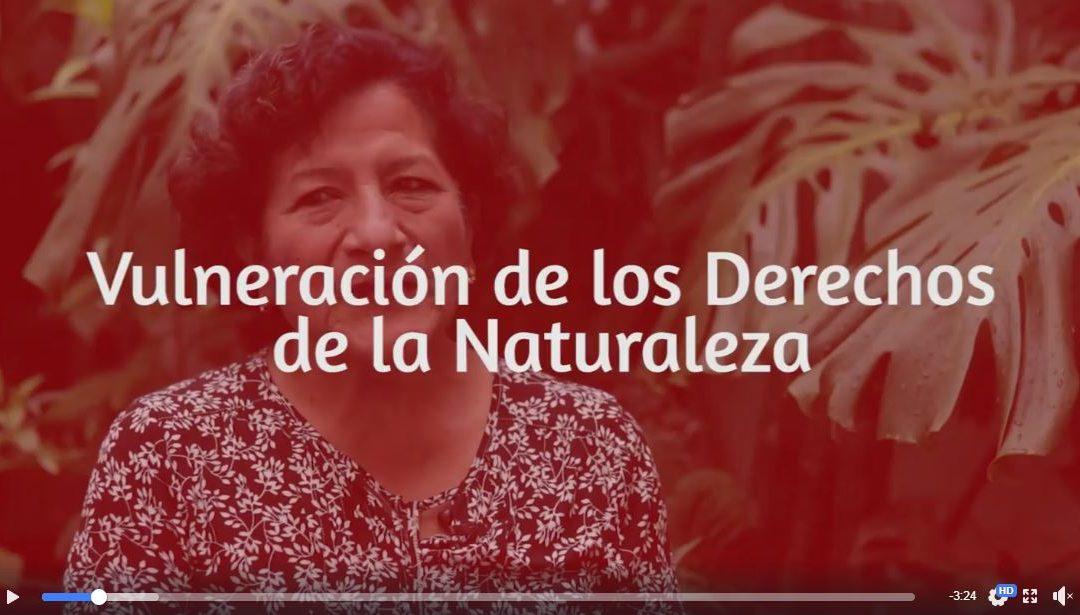 Capítol 5: Vulneració dels Drets de la Naturalesa: Introducció | Campanya Reexistir