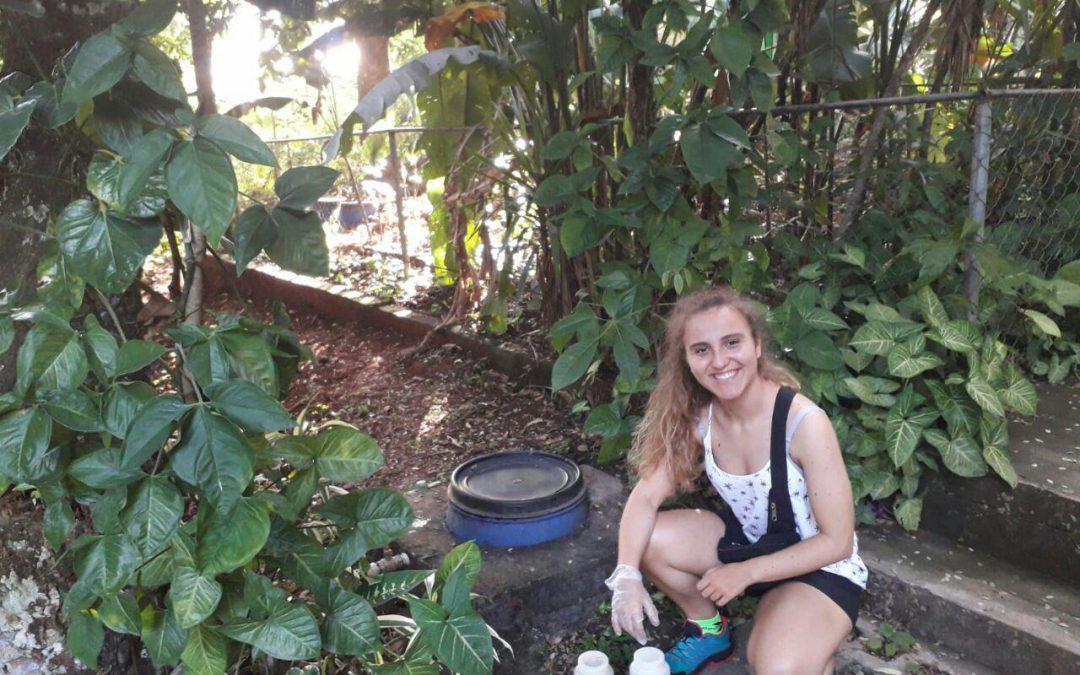 Investigando biojardineras en El Salvador