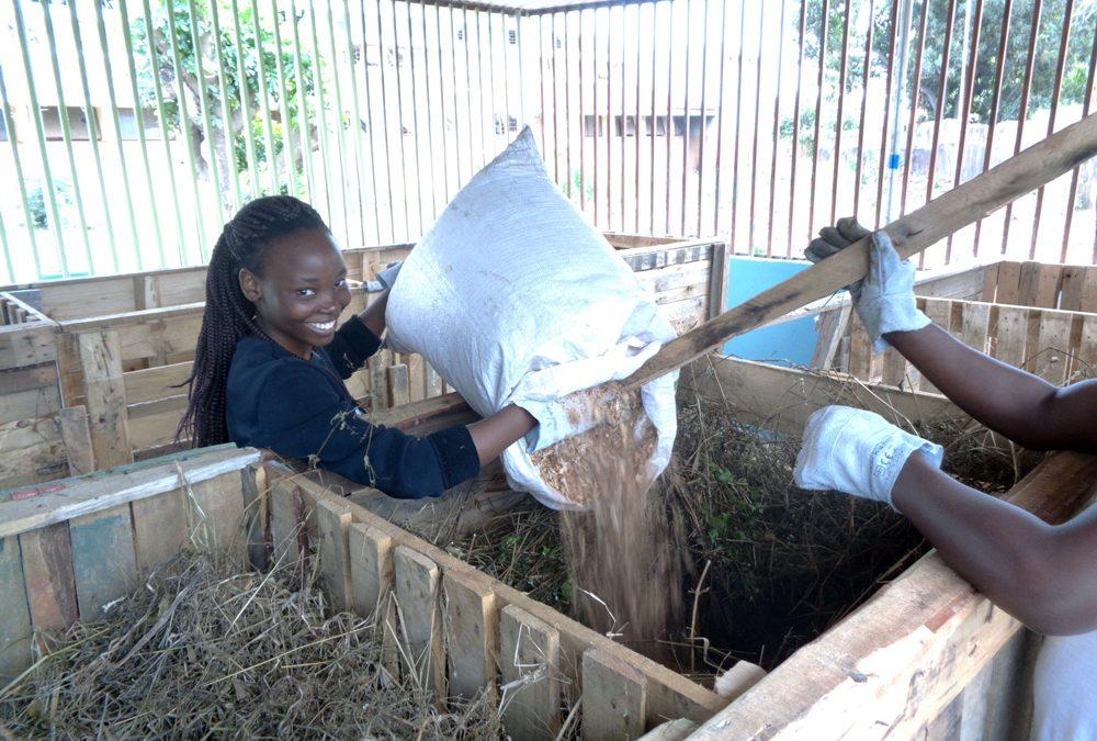 Comencen les activitats del procés de compostatge comunitari en l'Institut Industrial de Maputo