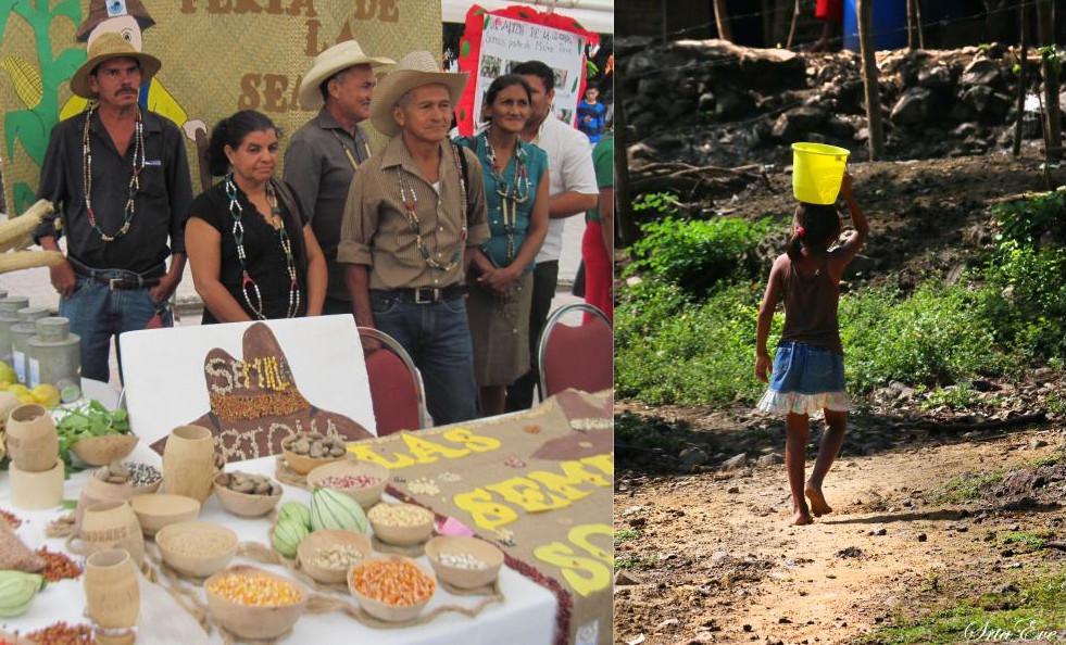 Avaliación dos programas en Honduras entre 2010 e 2017