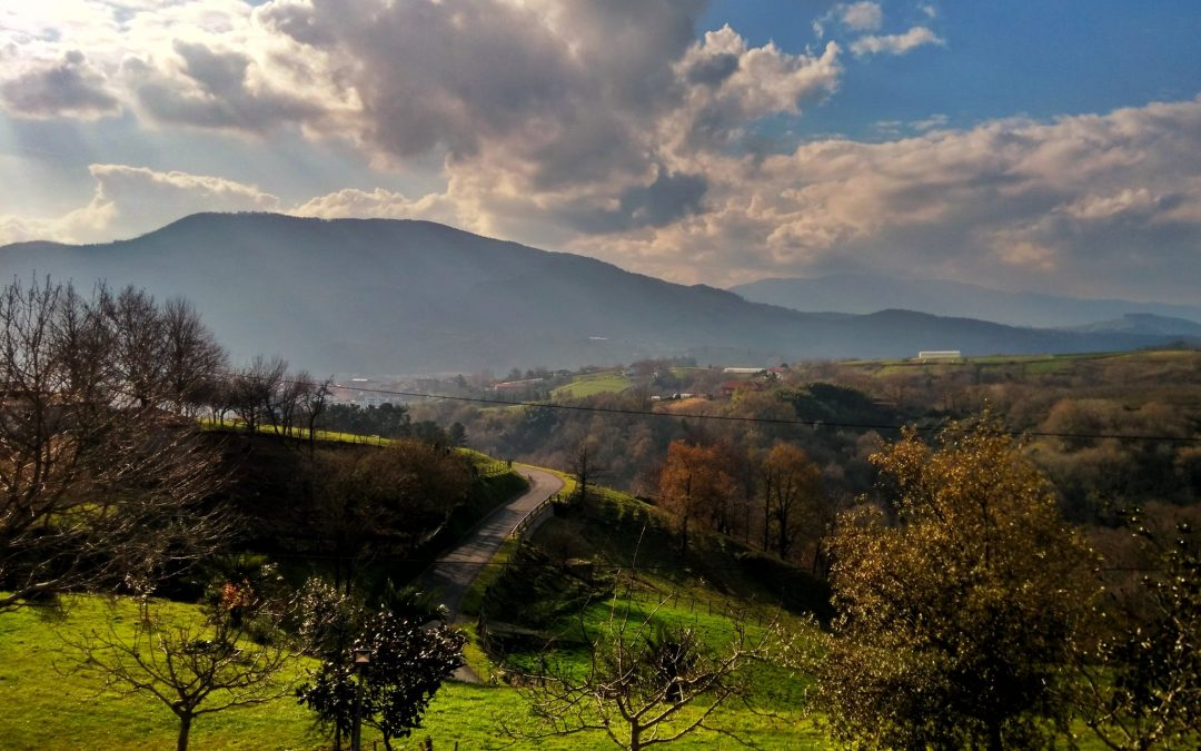 Baskika 2016