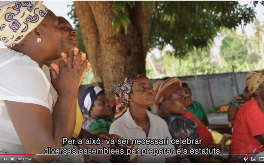 Vídeo: Enfortint l'emprenedoria i el moviment associatiu de les dones camperoles de la ciutat d'Inhambane