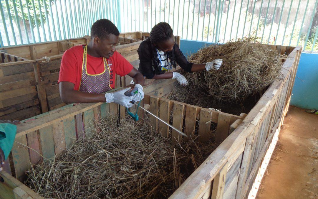 L'Hospitalet i Maputo s'uneixen envers l'enfortiment de la sostenibilitat social i ambiental