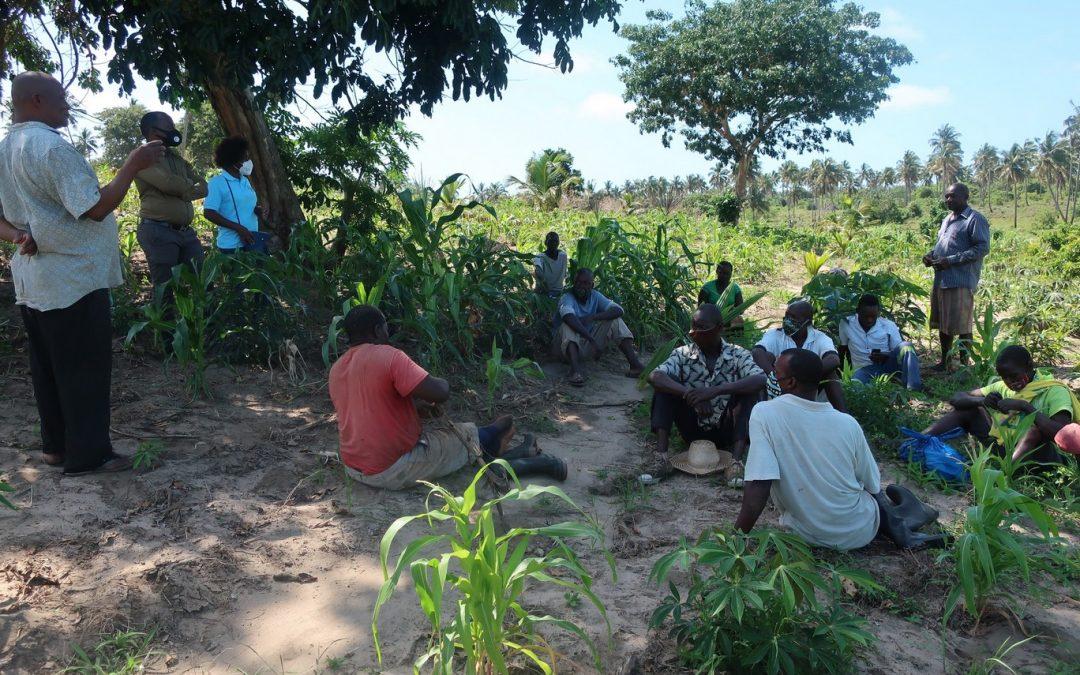 La perspectiva de género avanza también en el sector agrario de Mozambique