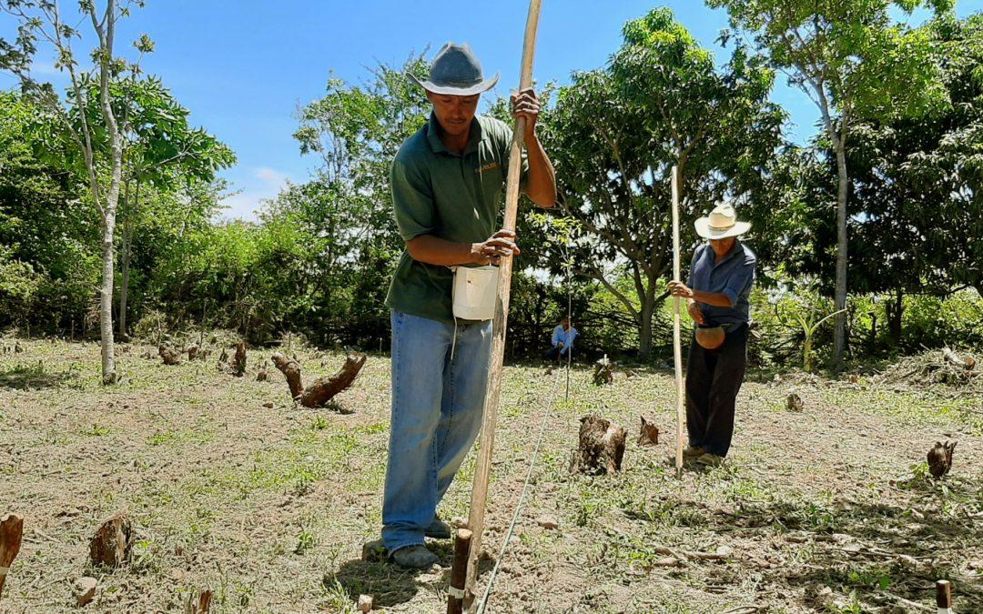 Segue o traballo pola soberanía alimentaria no Golfo de Fonseca